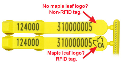 Image of SET tag with and without maple leaf logo