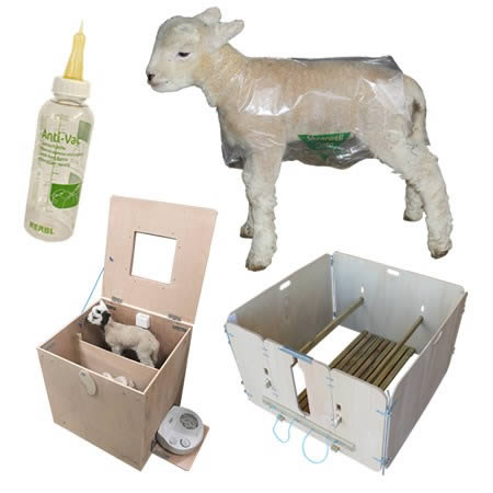 Picture for category Lambing Supplies