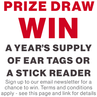 Prize draw graphic