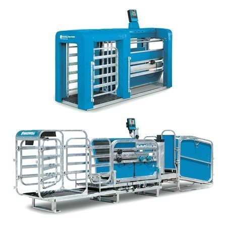 Picture for Te Pari Sheep Handling Equipment