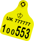 Image of tag