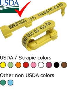 Shearwell USDA approved electronic sheep tags